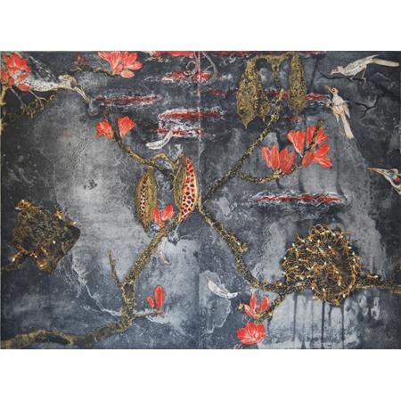 Fiona Hall, Brachychiton – Nanungguwa, Etching, 50 x 66 cm