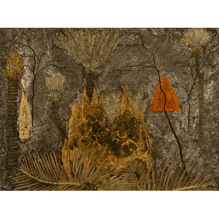 Fiona Hall, Cycads - Ngathu, Etching, 50 x 66 cm