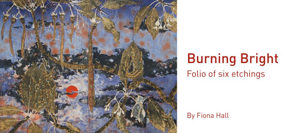 Fiona Hall, Casuarina – Mawurraki, 50 x 66 cm, from a folio of six etchings.