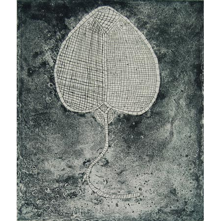 Nawarla – Stingray, etching by Linda Najinja, 32 x 27 cm