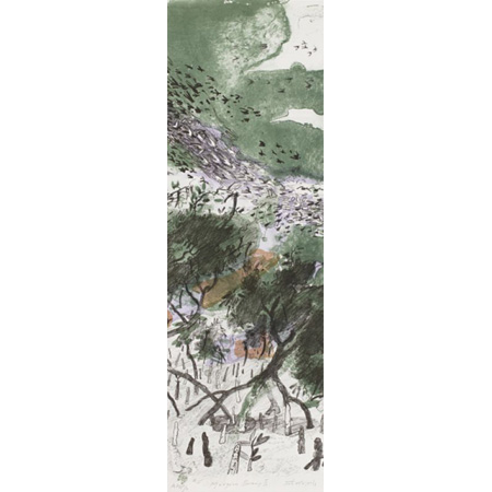 Mangrove Swamp II, lithograph with hand colouring printed in five colours from five aluminium plates, 2012