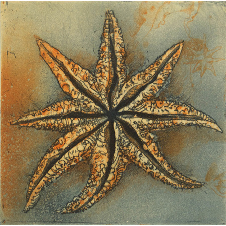 Starfish, etching