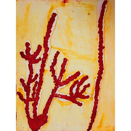 Yula, etching by Ningie Nanala Nangala