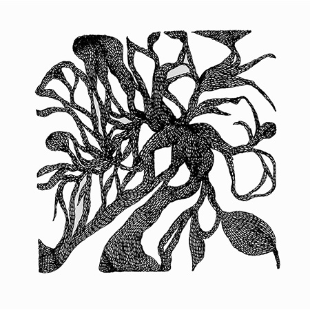Gutteral vine, ink on paper, 29 x 29 cm