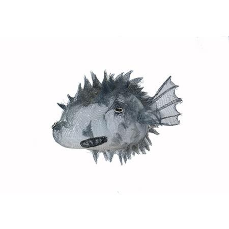 Common Blowhard fish, wire sculpture, 2015