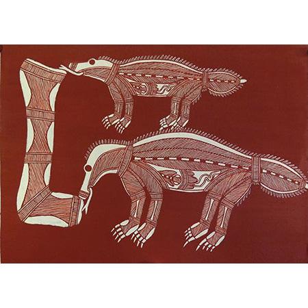Ngarrbek (Echidna), ochre on paper by Allan Nadjamerrek