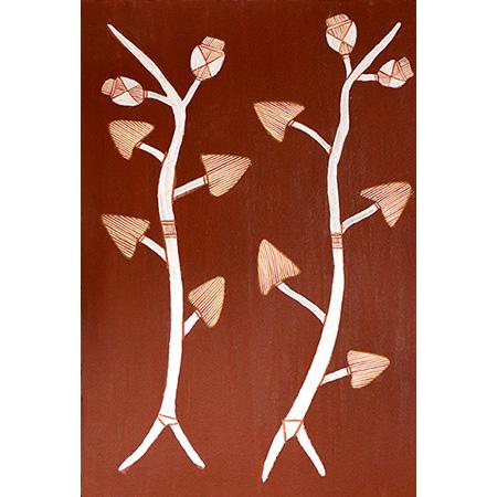 Manwak (Melastoma polyanthum), ochre on paper by Gavin Namarnyilk