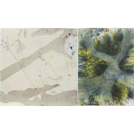 U. capilliflora environs, mixed medium on paper by Sarah Pirrie