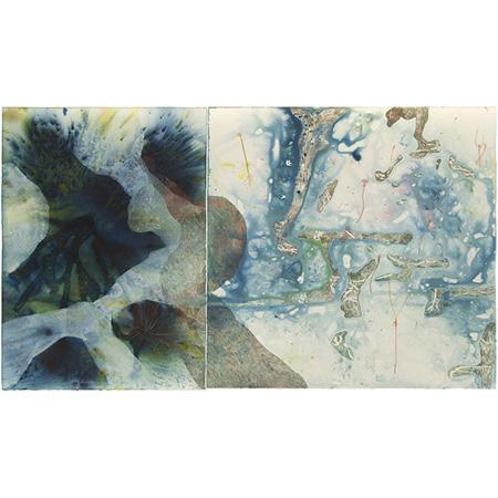 U. leptoplectra environs, mixed medium on paper by Sarah Pirrie