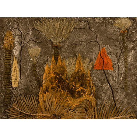 Cycads - Ngathu, etching by Fiona Hall,  2010