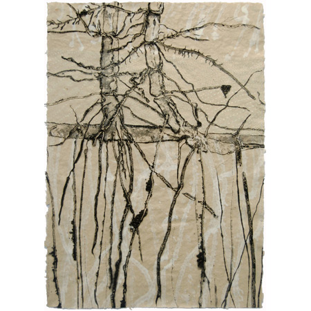 Rhizosphere, drypoint and mixed media, 60 x 42 cm, 2015