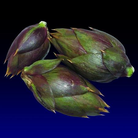 Cacocciuliddi - Baby artichokes, limited edition digital print