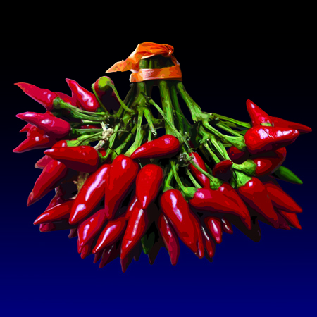 Pipareddi - Red chilies, limited edition digital print