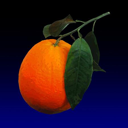 Taroccu - Blood orange, limited edition digital print