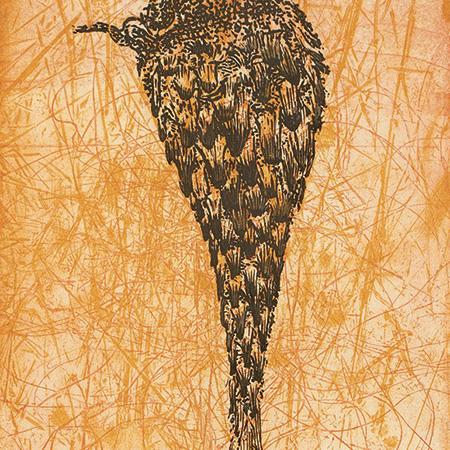 sand palm/resistance, etching by Judy Watson
