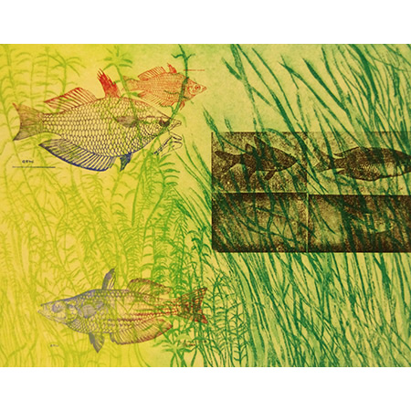 Whitley's Sunfishes, relief, etching, chine colle, by Jacqueline Gribbin