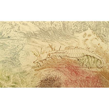 Fringe Dweller, relief, etching by Jacqueline Gribbin