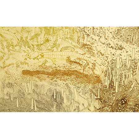 Fringe Dweller II, relief, etching by Jacqueline Gribbin