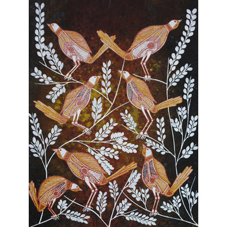 Dalkkedalkken (Gouldian finch) work on paper by Graham Badari