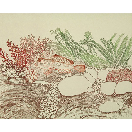Under Cover, relief, etching, drypoint, chine colle by Jacqueline Gribbin