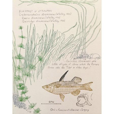 Strawman, etching, relief, 2018