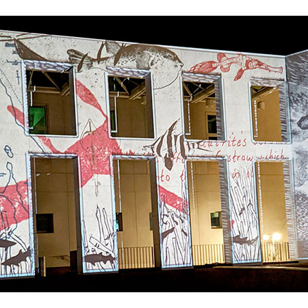 Projections on Parliament House by Jacqueline Gribbin
